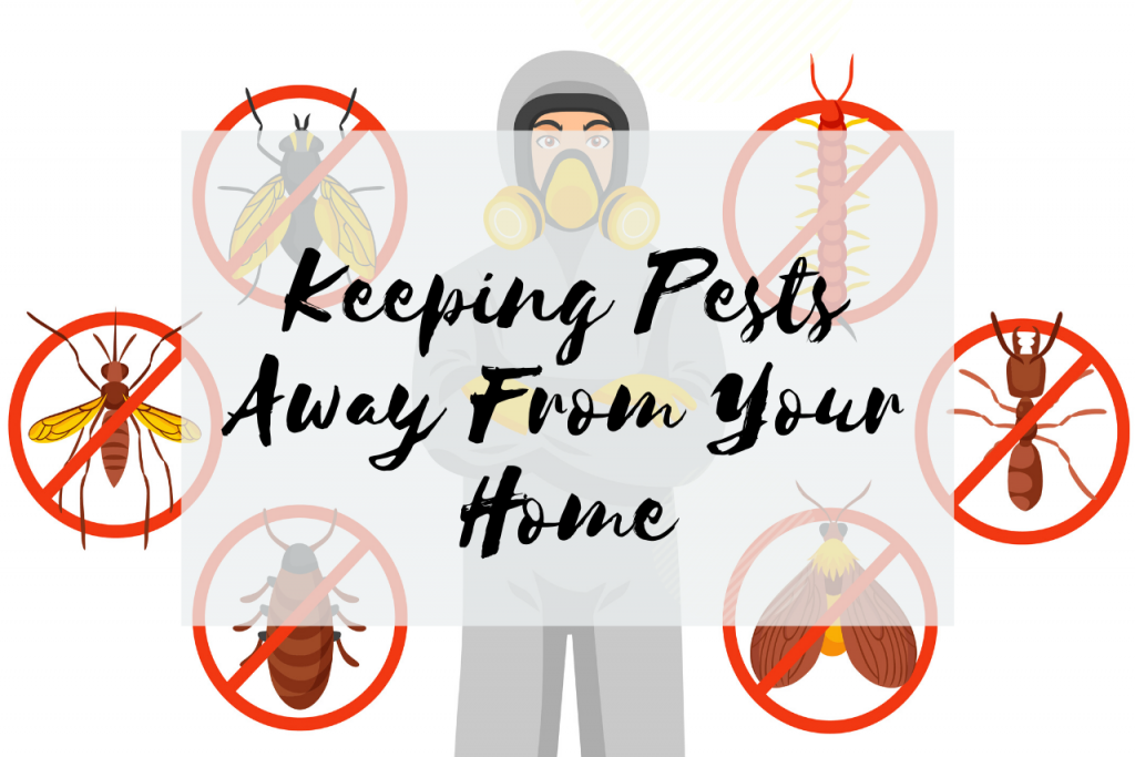 How To Prevent Unwanted Pests From Entering Your Home